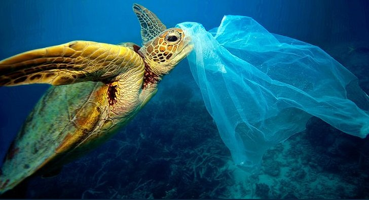 upcycling the oceans